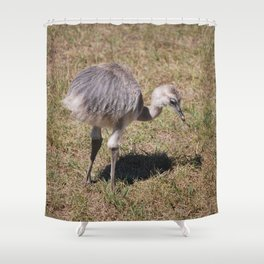 Baby Ostrich Shower Curtain