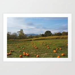 Hickory Nut Gap Farm - Pumpkin Patch Art Print