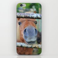 pony iPhone & iPod Skins featuring Pony by Blown A Wish Photography