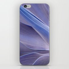 Shades of Lilac Agave Attenuata  iPhone & iPod Skin
