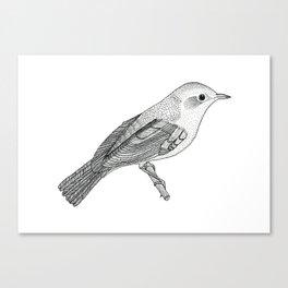Nightingale Canvas Print