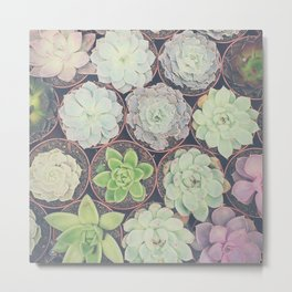 Succulents Have My Heart Metal Print
