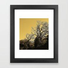 Golden Branches Framed Art Print