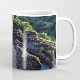 Grassy Falls Coffee Mug