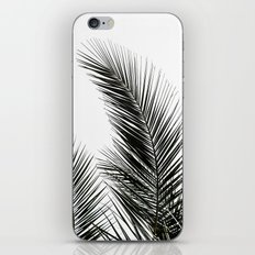 Palm Leaves iPhone & iPod Skin