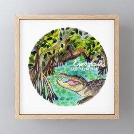 Everglades National Park Watercolor Framed Mini Art Print