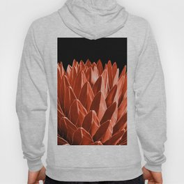 Agave Chic #4 #succulent #decor #art #society6 Hoody