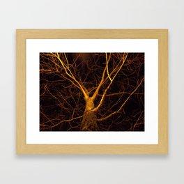 Night Branch Framed Art Print