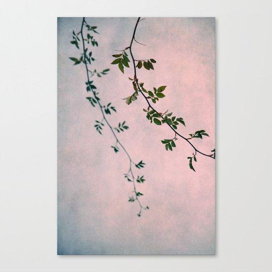 decembro Canvas Print