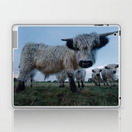Inquisitive White High Park Cow Laptop & iPad Skin