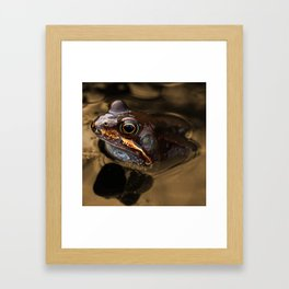 Bronze Kermit Framed Art Print