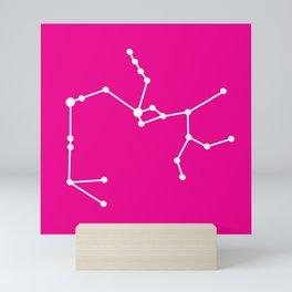 Sagittarius (White & Magenta) Mini Art Print