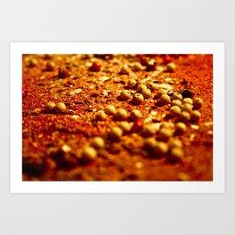 Spice Land: 2 Art Print
