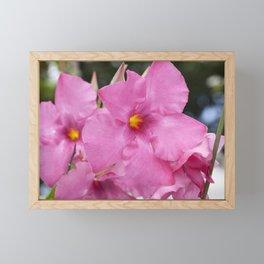 Mandevilla Vine Framed Mini Art Print