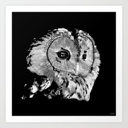 Wise Ol' Owl Black and White Art Print