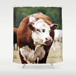Herefordshire Cow Shower Curtain