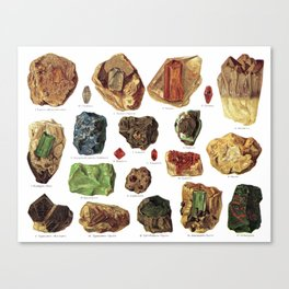 Vintage Gems And Minerals Canvas Print