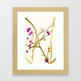 Soft pink berrys Framed Art Print