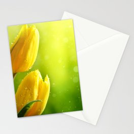 Lillys Stationery Cards