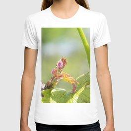vine shoots T-shirt