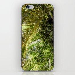 Giant Palms iPhone Skin