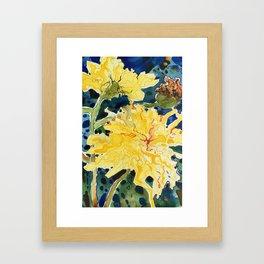 dandelions - pissenlits Framed Art Print