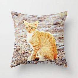 Majestic kitty Throw Pillow