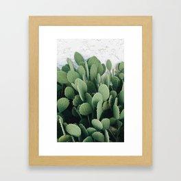 Cacti Desert Framed Art Print