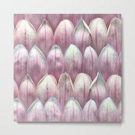 Magnolia Blossom in Blush Metal Print