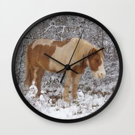 Pinto in the snow Wall Clock