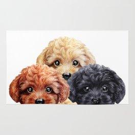 Toy poodle trio, Dog illustration original painting print Rug