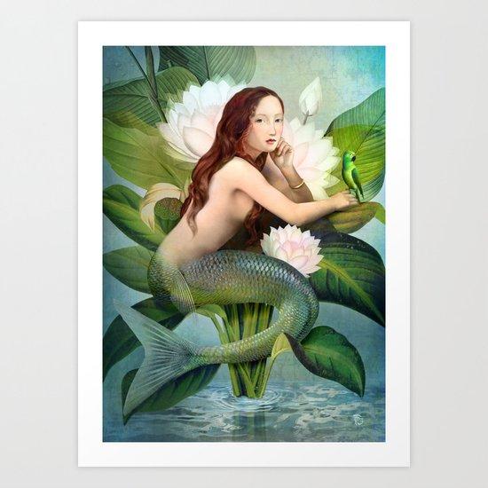 Water Garden Art Print