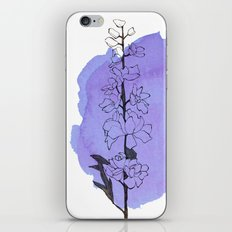delphinium iPhone & iPod Skin