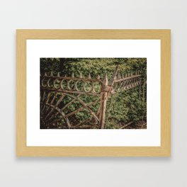 The Fence Framed Art Print
