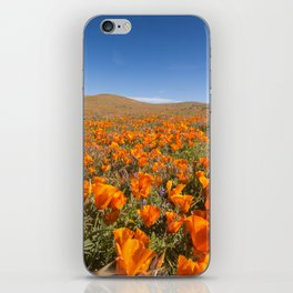 Blooming poppies in Antelope Valley Poppy Reserve iPhone Skin