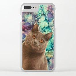 Beautiful Grey Cat Clear iPhone Case