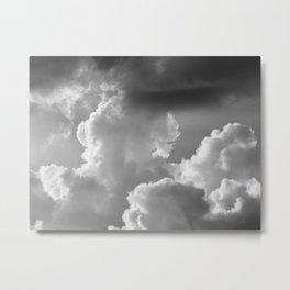 216 | austin Metal Print