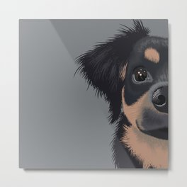 Mila the Carlin Pinscher Metal Print