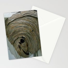 Hornets Nest Stationery Cards