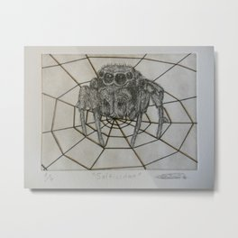 Salticidae Metal Print