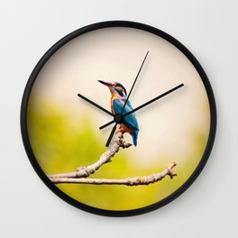 Kingfisher on the Branch Wall Clock