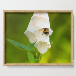 Bumblebee in the campanula Serving Tray