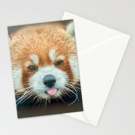 PANDA-RING TO ONE'S TASTE Stationery Cards