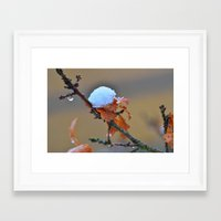 copper Framed Art Prints featuring Copper by Best Light Images