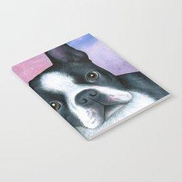 Dog 128 Boston Terrier Notebook