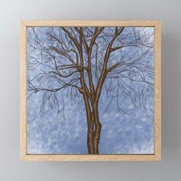 The Twisted Tree Framed Mini Art Print