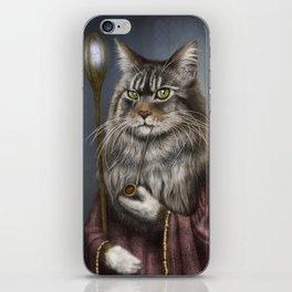 Wizard Cat iPhone Skin