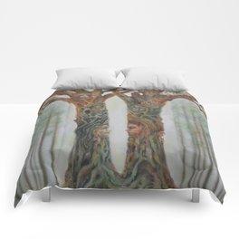 Harmonious Passions Comforters