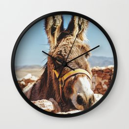 Donkey photo Wall Clock