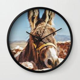 Donkey photo Wall Clock